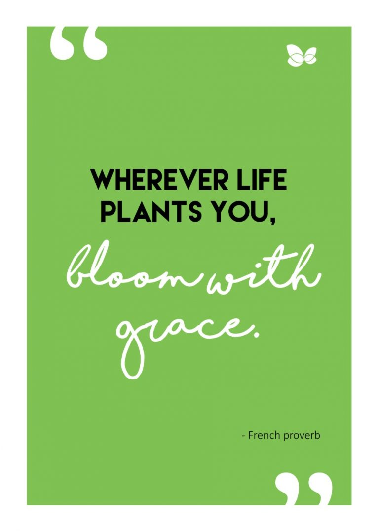 BloomwithGrace